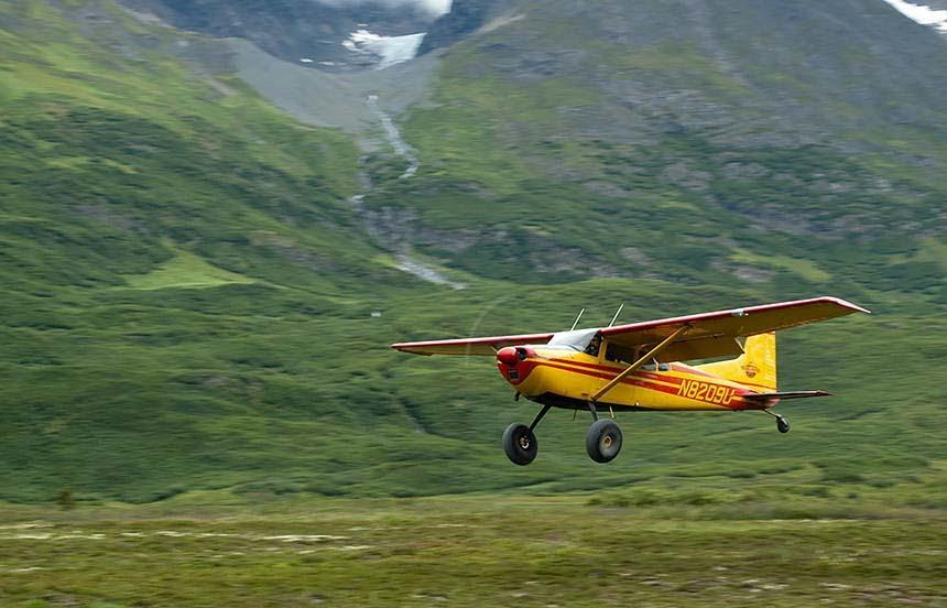 Bushplane